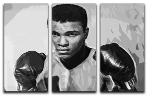 Muhammad Ali 3 Split Panel Canvas Print - Canvas Art Rocks - 1