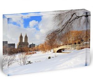 New York Manhattan Central Park panorama winter Acrylic Block - Canvas Art Rocks - 1