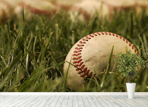 Nostalgic baseballs in the grass Wall Mural Wallpaper - Canvas Art Rocks - 4