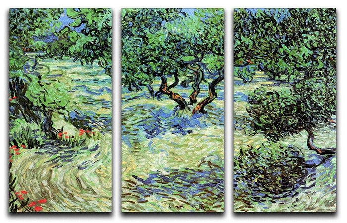 Olive Grove by Van Gogh 3 Split Panel Canvas Print
