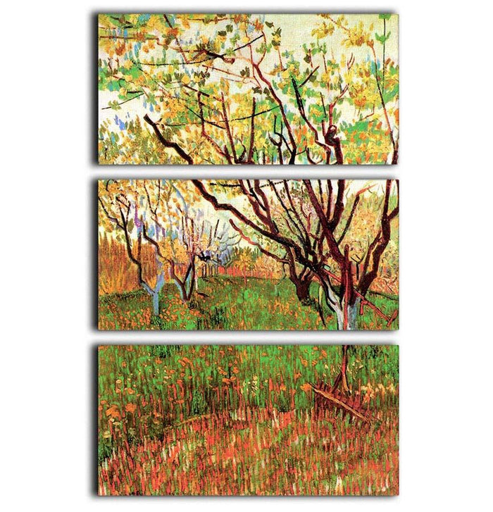 Orchard in Blossom by Van Gogh 3 Split Panel Canvas Print