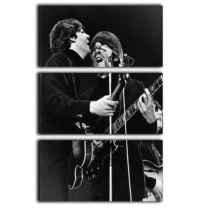 Paul McCartney and George Harrison on stage 3 Split Panel Canvas Print