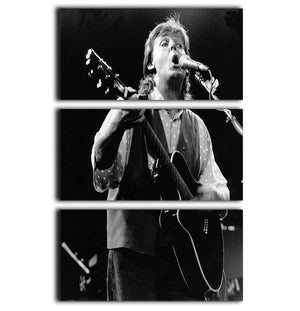 Paul McCartney on stage in 1989 3 Split Panel Canvas Print - Canvas Art Rocks - 1