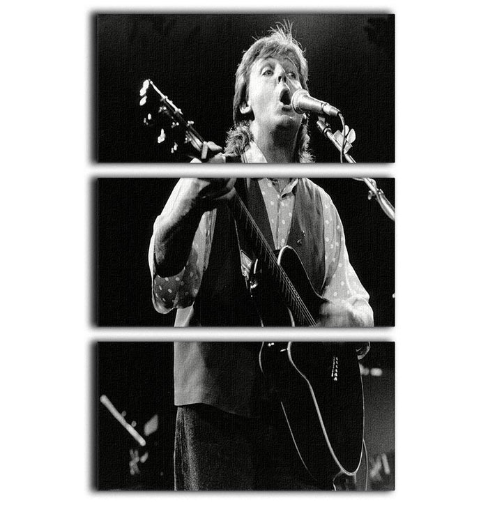 Paul McCartney on stage in 1989 3 Split Panel Canvas Print