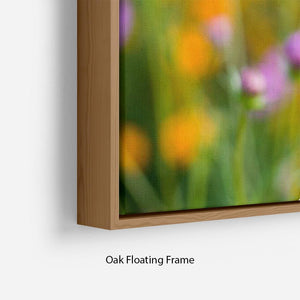 Pink cosmos in the flower fields Floating Frame Canvas