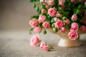 Pink roses on an old table of burlap Wall Mural Wallpaper - Canvas Art Rocks - 1