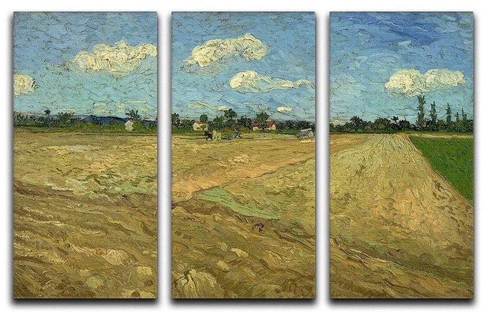 Ploughed fields by Van Gogh 3 Split Panel Canvas Print