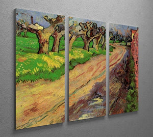 Pollard Willows by Van Gogh 3 Split Panel Canvas Print - Canvas Art Rocks - 4