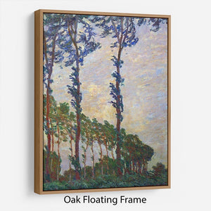 Poplar series wind by Monet Floating Frame Canvas