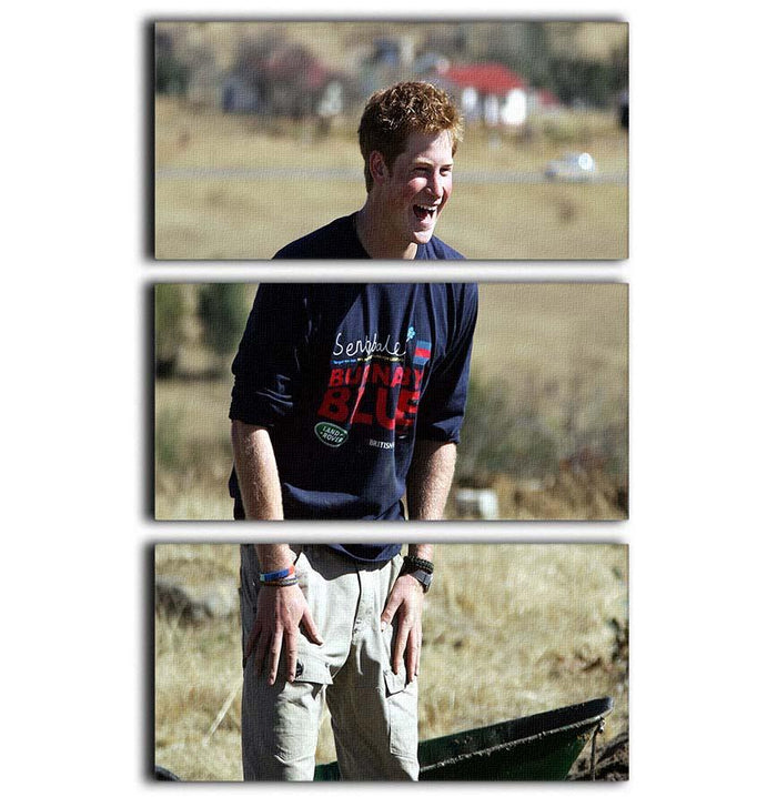 Prince Harry helping build a school in Lesotho South Africa 3 Split Panel Canvas Print
