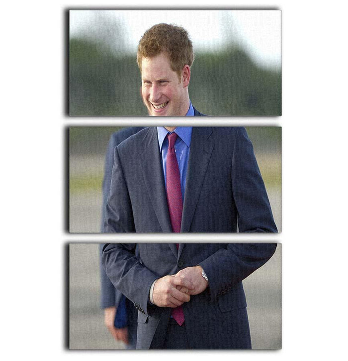 Prince Harry on a royal visit to Belize 3 Split Panel Canvas Print