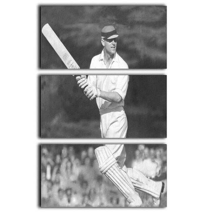 Prince Philip batting at a charity cricket match 3 Split Panel Canvas Print