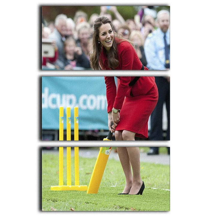 Prince William and Kate playing cricket in New Zealand 3 Split Panel Canvas Print