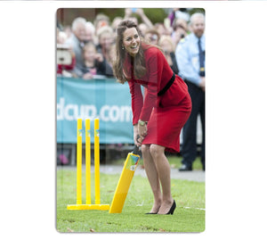 Prince William and Kate playing cricket in New Zealand HD Metal Print