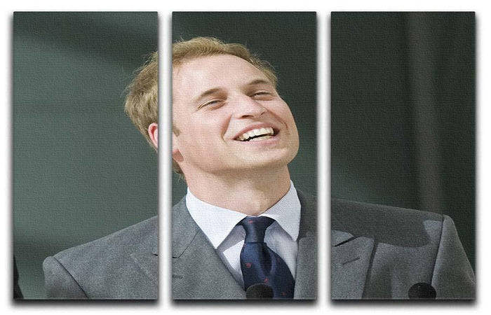 Prince William opening the Darwin Centre Museum 3 Split Panel Canvas Print