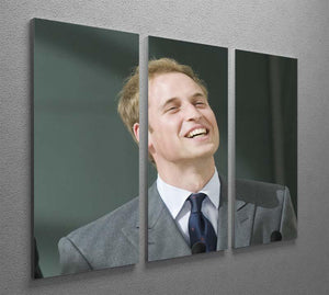 Prince William opening the Darwin Centre Museum 3 Split Panel Canvas Print - Canvas Art Rocks - 2