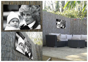 Princess Diana with six month old Prince Harry Outdoor Metal Print - Canvas Art Rocks - 2