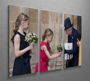 Queen Elizabeth II receiving flowers at a VE Day ceremony 3 Split Panel Canvas Print - Canvas Art Rocks - 2