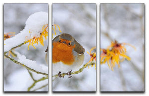 Robin in the Snow 3 Split Panel Canvas Print - Canvas Art Rocks - 1