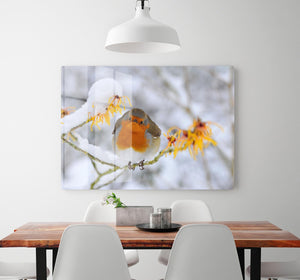 Robin in the Snow HD Metal Print - Canvas Art Rocks - 2