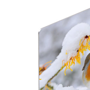 Robin in the Snow HD Metal Print - Canvas Art Rocks - 4