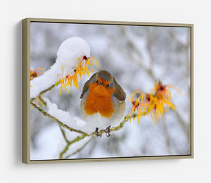Robin in the Snow HD Metal Print - Canvas Art Rocks - 8