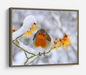 Robin in the Snow HD Metal Print - Canvas Art Rocks - 10