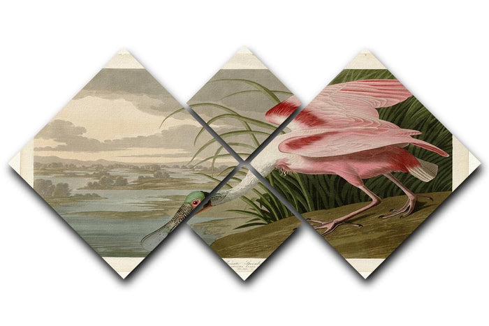 Roseate Spoonbill by Audubon 4 Square Multi Panel Canvas