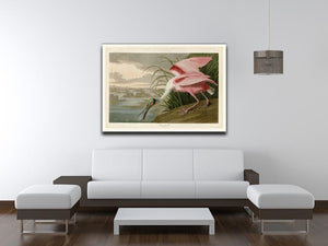 Roseate Spoonbill by Audubon Canvas Print or Poster - Canvas Art Rocks - 4