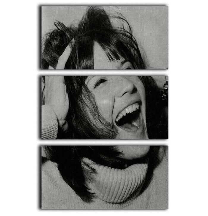 Sandie Shaw laughing 3 Split Panel Canvas Print