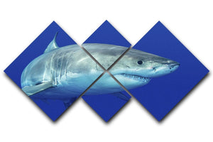 Shark swimming looking for food 4 Square Multi Panel Canvas  - Canvas Art Rocks - 1