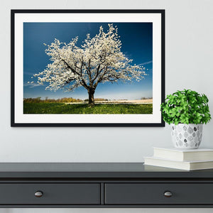 Single blossoming tree in spring Framed Print - Canvas Art Rocks - 1