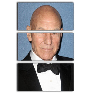 Sir Patrick Stewart 3 Split Panel Canvas Print - Canvas Art Rocks - 1