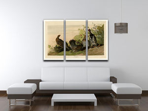 Spotted Grouse by Audubon 3 Split Panel Canvas Print - Canvas Art Rocks - 3