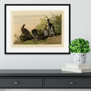 Spotted Grouse by Audubon Framed Print - Canvas Art Rocks - 1