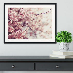 Spring Cherry blossoms Framed Print - Canvas Art Rocks - 1