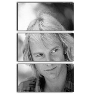 Sting in profile 3 Split Panel Canvas Print - Canvas Art Rocks - 1