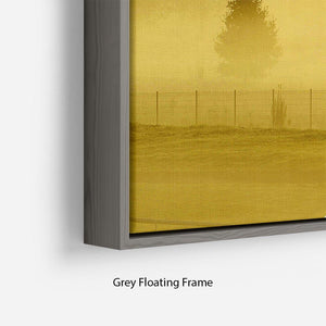 Sunrise and Mist Floating Frame Canvas - Canvas Art Rocks - 4