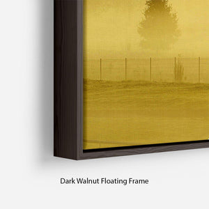 Sunrise and Mist Floating Frame Canvas - Canvas Art Rocks - 6