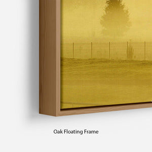 Sunrise and Mist Floating Frame Canvas - Canvas Art Rocks - 10
