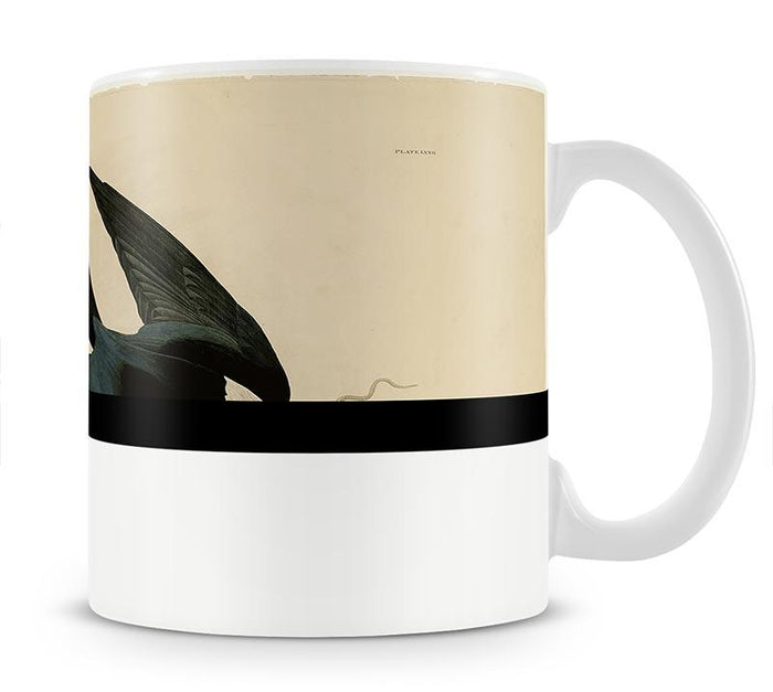 Swallow tailed Hawk by Audubon Mug