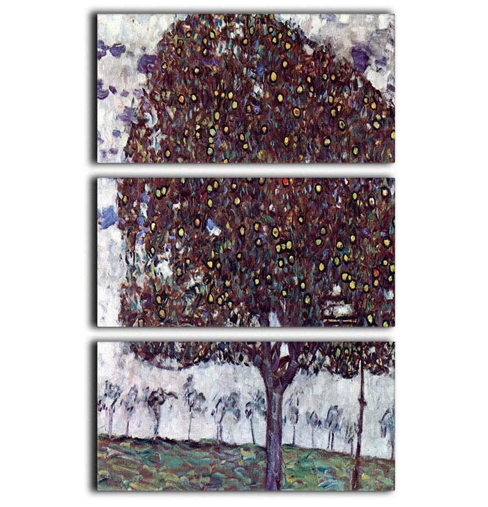 The Apple Tree by Klimt 3 Split Panel Canvas Print
