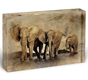 The Elephants March Version 2 Acrylic Block - Canvas Art Rocks - 1