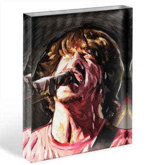 The Foo Fighters Dave Grohl Acrylic Block - Canvas Art Rocks - 1