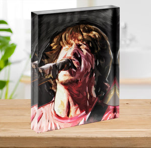 The Foo Fighters Dave Grohl Acrylic Block - Canvas Art Rocks - 2