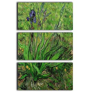 The Iris by Van Gogh 3 Split Panel Canvas Print - Canvas Art Rocks - 1
