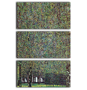 The Park by Klimt 3 Split Panel Canvas Print - Canvas Art Rocks - 1