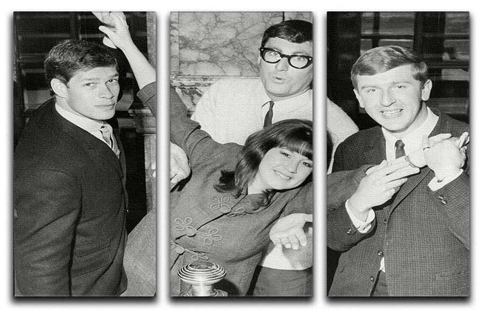 The Seekers 3 Split Panel Canvas Print