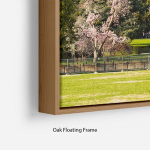 The White House Blossoms Floating Frame Canvas