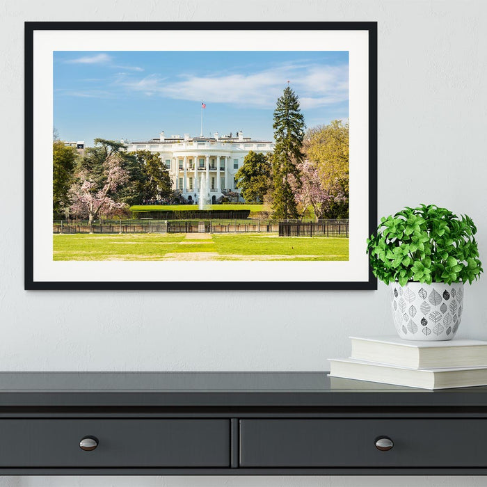 The White House Blossoms Framed Print